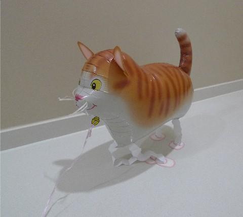 walkercat